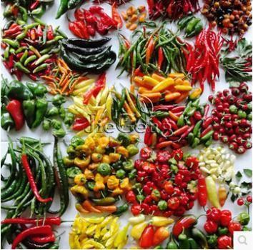 100 sztuk/worek, mieszane różne pieprz nasiona warzyw, bez gmo nasiona warzyw, darmowa dostawa!