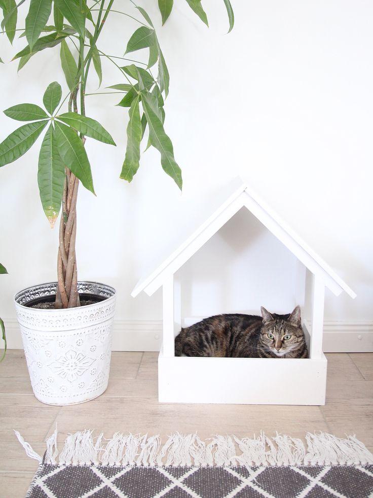 die besten 25 kratzbaum selber bauen natur ideen auf. Black Bedroom Furniture Sets. Home Design Ideas