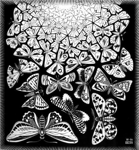 Butterflies - M.C. Escher