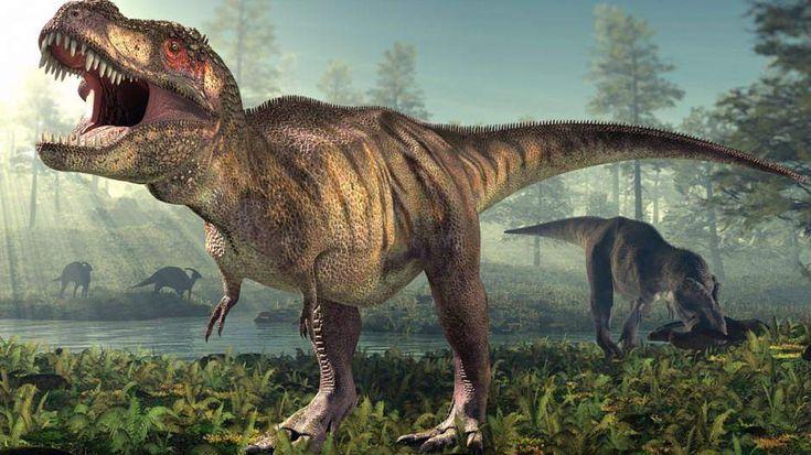 Il pouvait soulever environ 180 kilos  #animaux #images #bras #poids #T-Rex