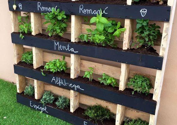 Ideas para crear un jardín vertical casero - Emedemujer VE