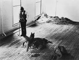 Joseph Beuys - I like America and America likes me, 1974