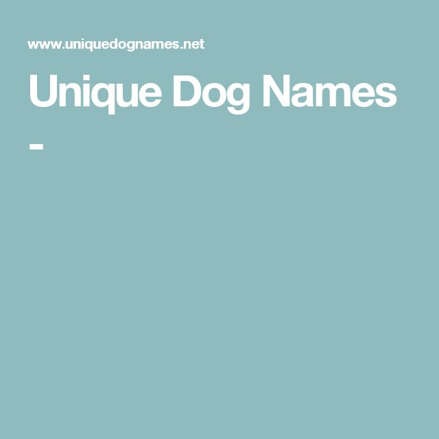 Die Besten 25 Unique Female Dog Names Ideen Auf Pinterest