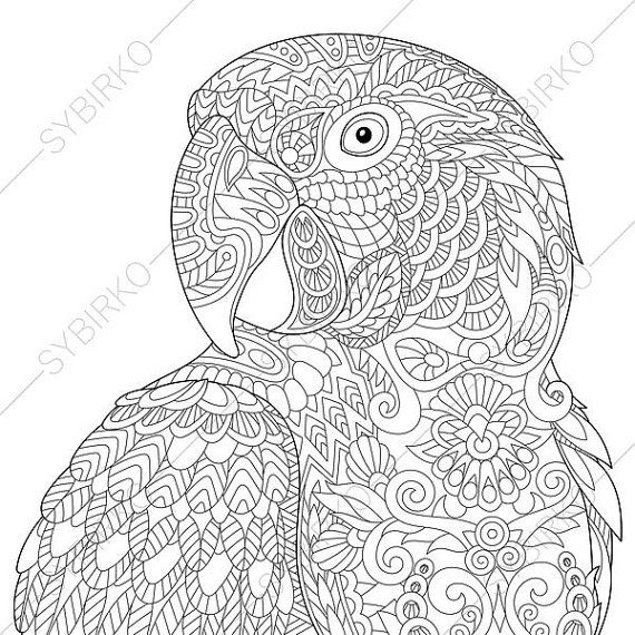 Coloring Pages for adults Macaw Parrot Tropical