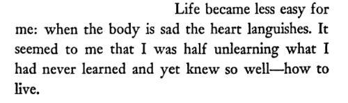 The Fall, Albert Camus