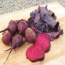 Frutas, hortalizas, legumbres y frutos secos de alto contenido en Hierro ecoagricultor.com