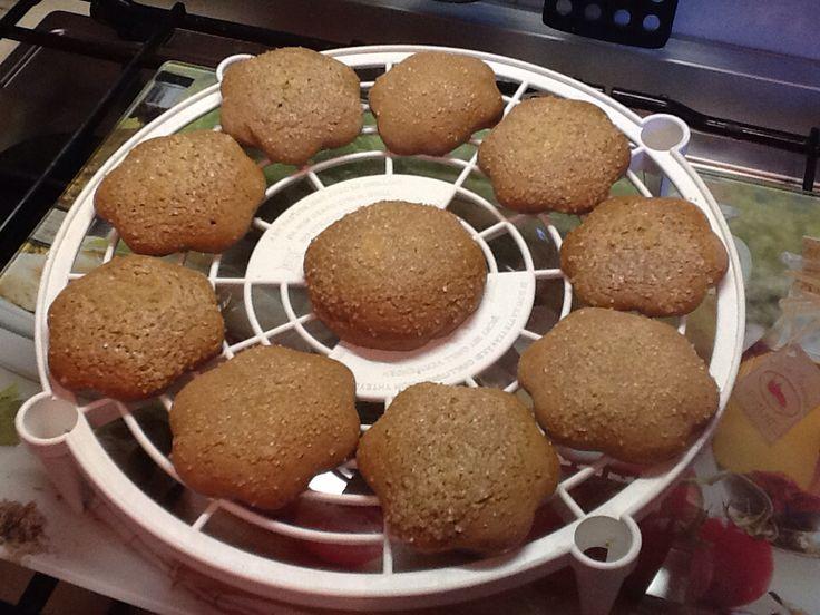 """BISCOTTONI AL CACAO.Realizzati aggiungendo 2 cucchiai di cacao nella ricetta dei """"Biscotti da colazione senza ammoniaca"""". Ingr.: 500g di farina,200g di zucchero,2 uova,100 ml di olio,60 ml di latte tiepido,scorza d'arancia o di limone,1 bustina di lievito,1 bustina di vanillina. ( Nella versione al cacao aggiungere 2 cucchiai di cacao e 1 cucchiaio di latte). Zucchero di canna e latte .Impastare tutti gli ingredienti a mano o con Bimby. Lasciare riposare per 1 ora in frigo. Stendere la…"""