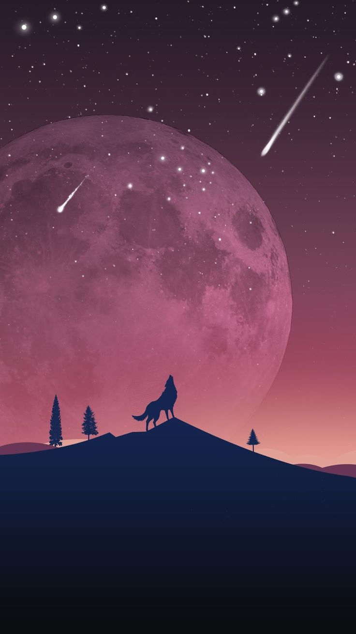 Night sky iphone wallpaper tumblr - Warming Up For The Night S Howl Wallpaper Wolves Animals Mobile Wallpapers Wallpapers Mobile