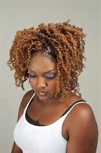 Twist Hairstyle Inspiration 31 Best Spring Twist Images On Pinterest  Protective Hairstyles