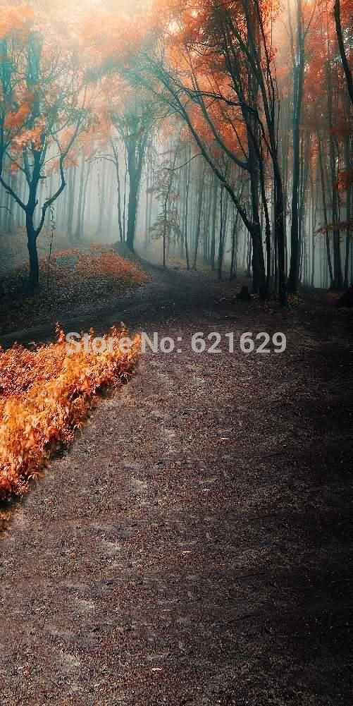 Туманный Лес 10'x20 'ср Компьютерная роспись Scenic Фотография Фон Фотостудия Фон XLX-624