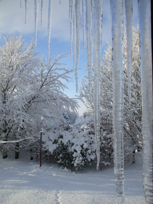 Icicles.....nature's decoration Icicles...photo shop could add a bit of blue for painting so they would show up.