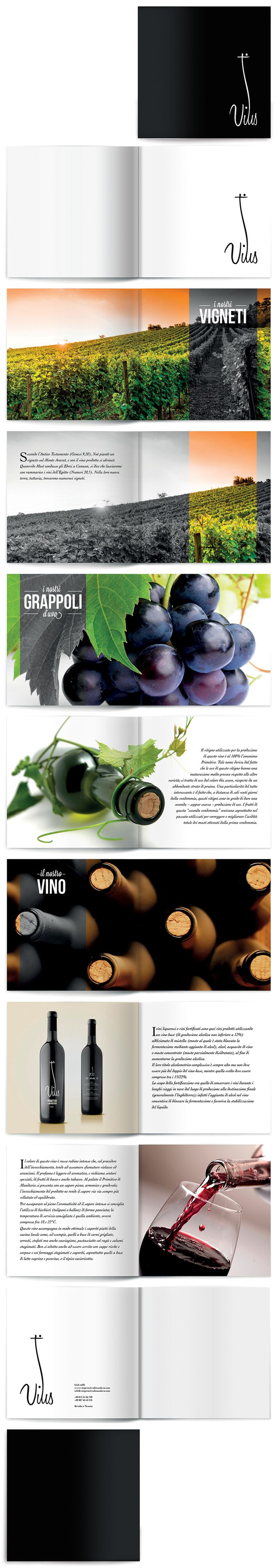 Brochure of wine. I love the design and simplicity of this brochure.