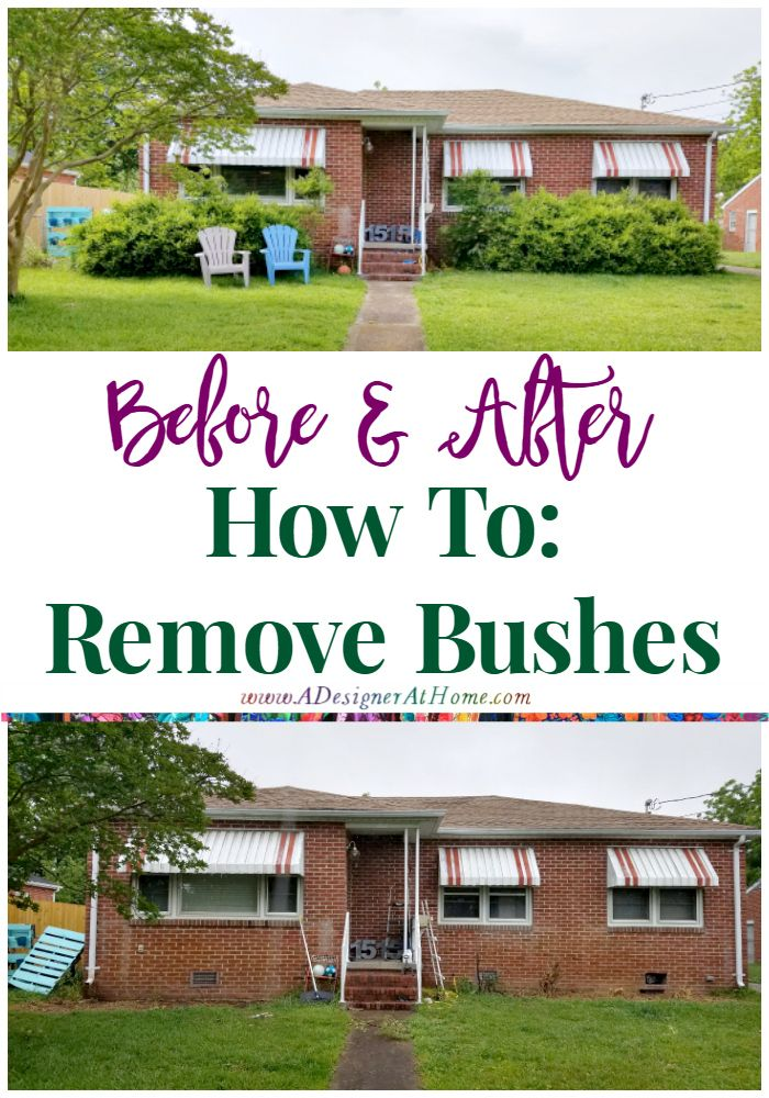 How To Remove Bushes Http Www Adesignerathome Com How To