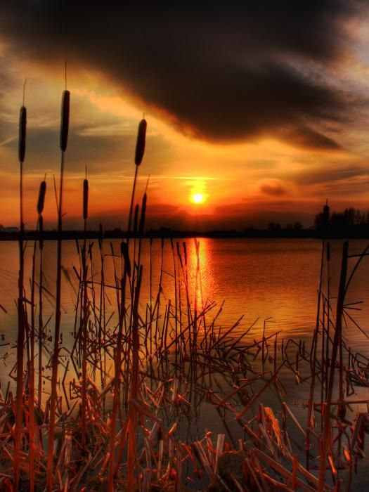 Sunset at Craigavon Lakes, County Armagh, Northern Ireland; photo by Kim Shatwell