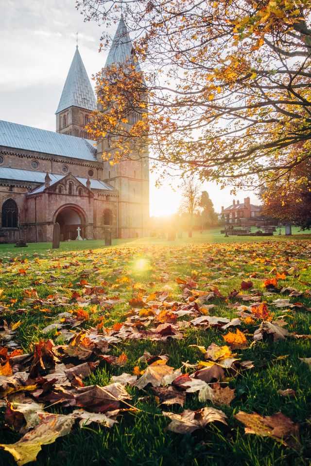 Southwell Minster  #church #town #uk #nottinghamshire #autumn #leaves #sunset