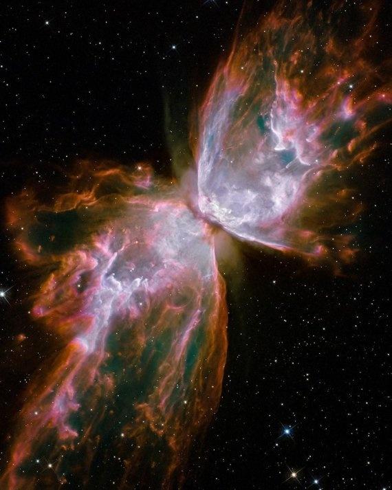 Butterfly Nebula Deep Space Photograph