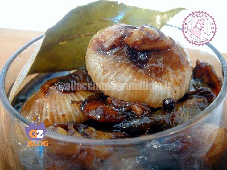 le cipolline in agrodolce piemontese sono un contorno gustosissimo e particolare adatte ad accompagnare ogni vostro piatto di carne.