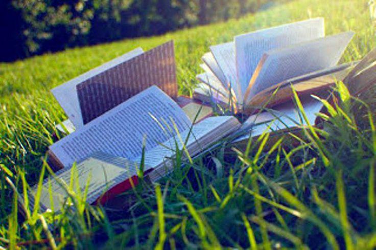"""""""Leer 20-20"""" busca incrementar la cantidad de libros que los niños leen: En el marco de los 20 años de Fundación Leer, Bunge se suma a esta…"""