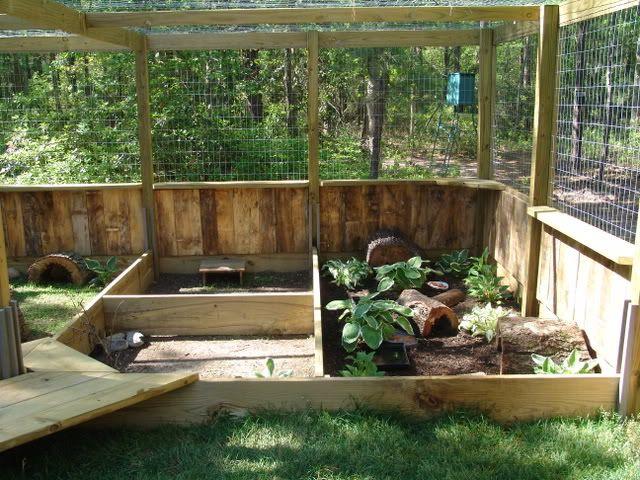 Ideas for outdoor enclosures   Tortoise Forum