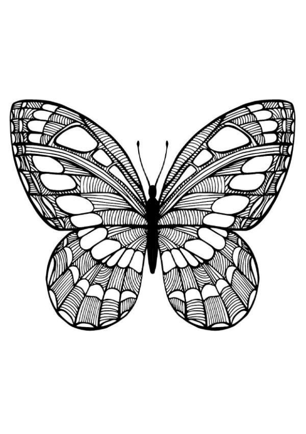 Раскраски-антистресс с изображением бабочек   МАМА И МАЛЫШ