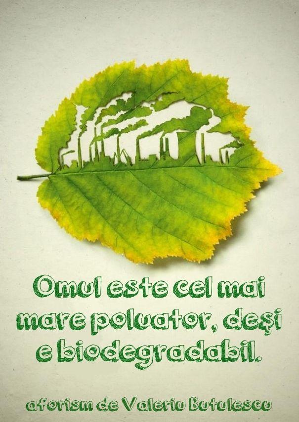 #citat #quote #fruza #leaf #aforism #poluare #pollution