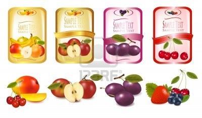 Quattro etichette con bacche e frutti. Vettore.  Archivio Fotografico