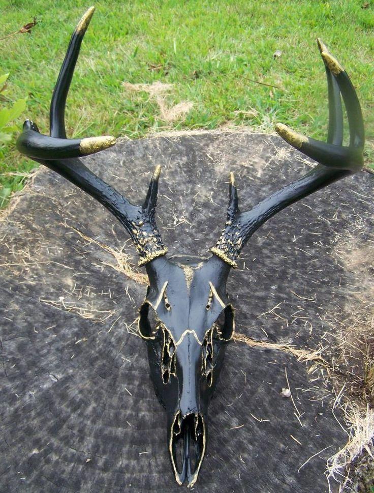 Hand Painted European Deer Skull Mount w Antlers Black Gold Ships Free   eBay