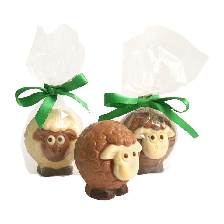 Milk Chocolate and White Chocolate Mixed Sheep