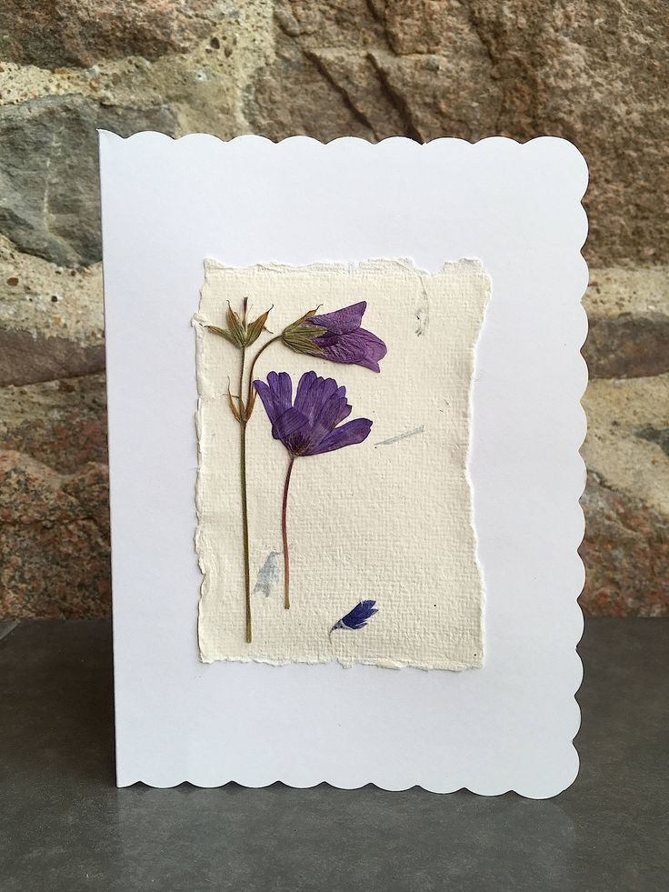 Birthday card / Greeting card / Real Flower art / Dried Flowers / Recycled paper card / Arts & Crafts / Pressed Flowers - CloeCards by CloeCards on Etsy