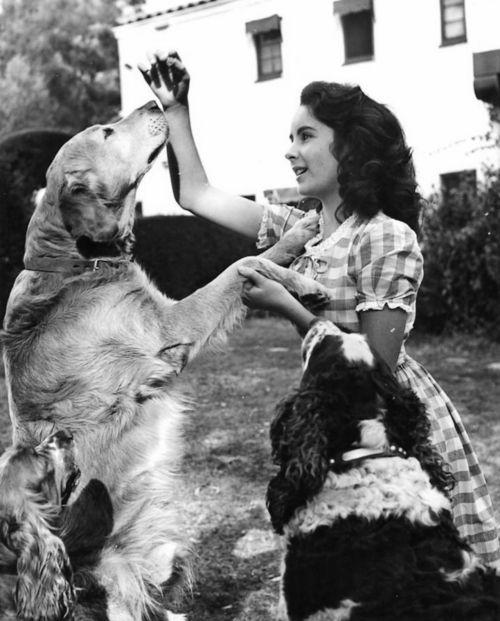 Elizabeth Taylor and her dog's....