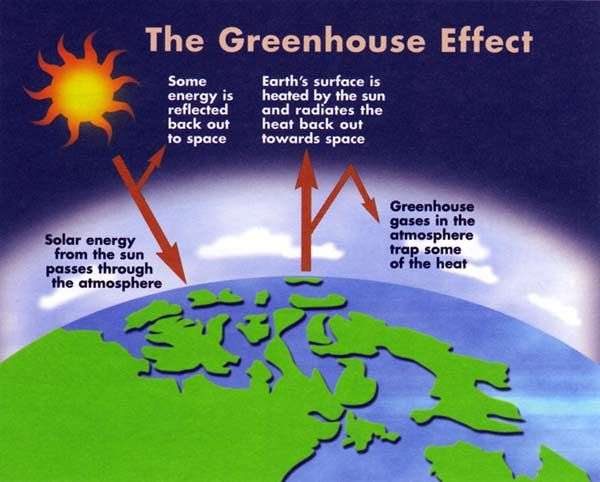 The Greenhouse effect for teenagers?