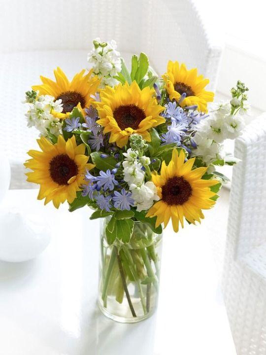 Картинки вазы с подсолнухами и полевыми