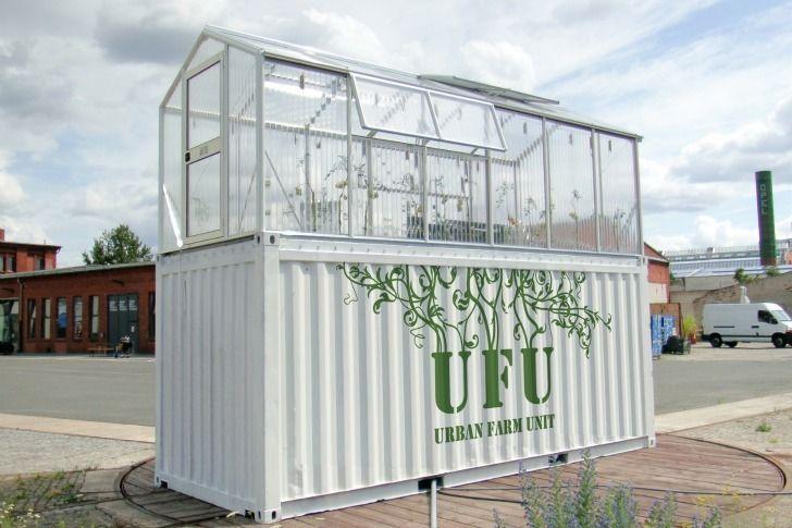 Unidades urbanas agrícolas transformam velhos containers em estufas de produtos orgânicos