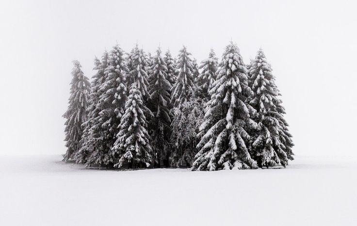 Wald #43 by HeikoGerlicher on DeviantArt