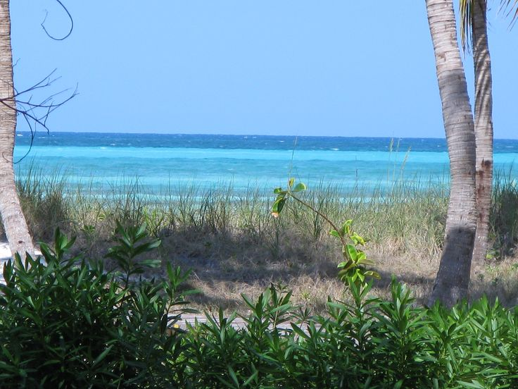 Cayo Guillermo, the view from our patio door.