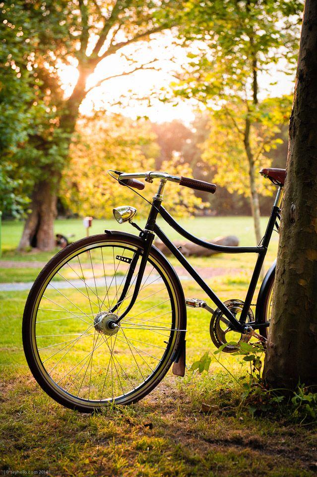 18W Eska Unicykl Black - recycled old czech uni bike - brooks / schwalbe / shimano