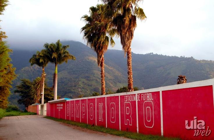 En el Conjunto Universitario Campo de Oro, se encuentra intalaciones deportivas como la piscina olímpica, el estadio Polideportivo, el estadio de Softball, y los campos de entrenamiento de Rugby, Judo y Voleyball de Playa de la Universidad de Los Andes, Mérida Venezuela