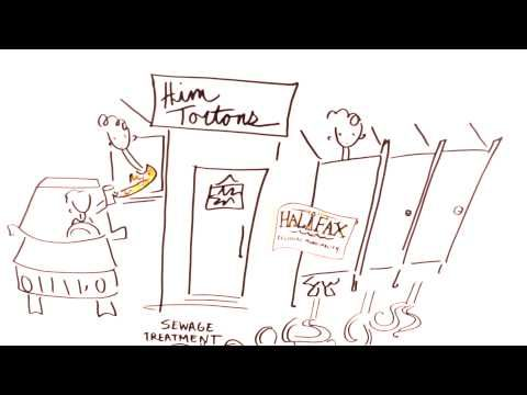 Shows the different responsibilities of the levels of government (video) - Whiteboard animation