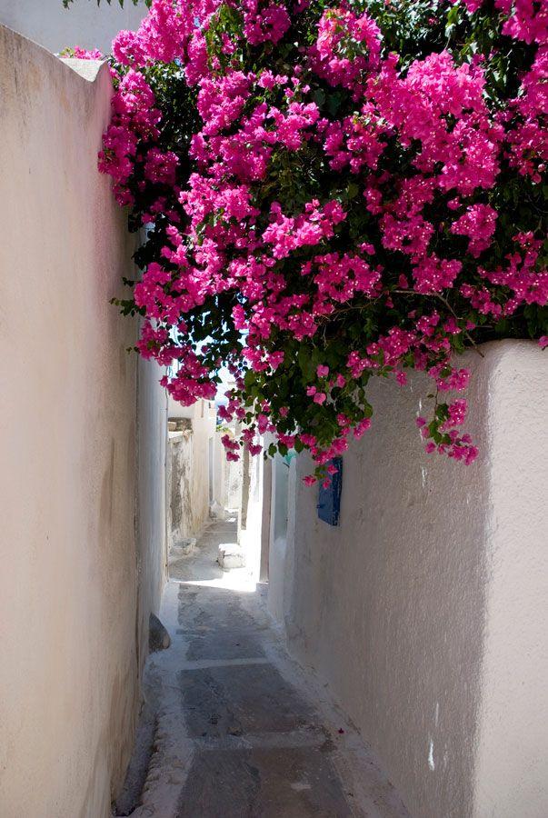 In the streets of Emporio, Santorini
