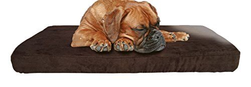 Cheap Furhaven Orthopedic Mattress Pet Bed Jumbo Quilted Espresso for Dogs and Cats https://birdhousesforoutside.info/cheap-furhaven-orthopedic-mattress-pet-bed-jumbo-quilted-espresso-for-dogs-and-cats/