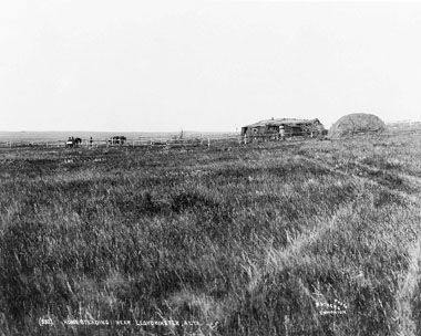 """Saskatchewan - Homesteading near Lloydminster, c. 1904. Immigrants were attracted to the Canadian West by government advertisements of """"free"""" land. Under the DOMINION LANDS POLICY, 160 acres cost only $10, but the homesteader had to build a house, often of log or sod, and cultivate a specified area within 3 years. A new homesteader required basic agricultural implements, and since horses were expensive, most used oxen to clear and break the land."""