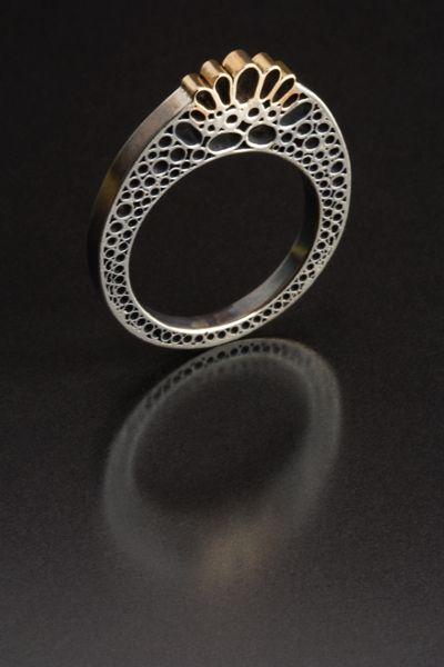 Ring #7: Stained Cell Series, 2010 - Vina rust's photostream.
