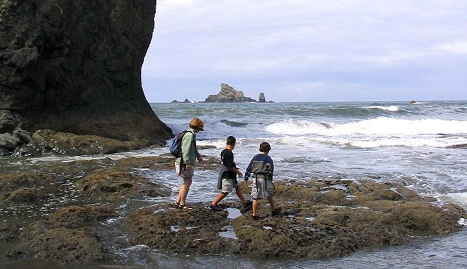 44 Best Family Travel On The Olympic Peninsula Images On Pinterest Family Trips Family