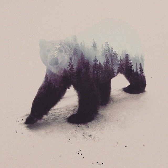 Animales en su habitat - Obras de Andreas Lie. Más piezas en http://unamoscaenlaluna.com/2015/02/animales-en-su-habitat-%C2%B7-el-arte-de-andreas-lie.html