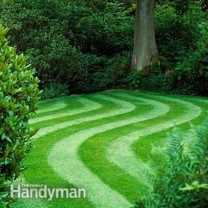 how to keep grass green with less water