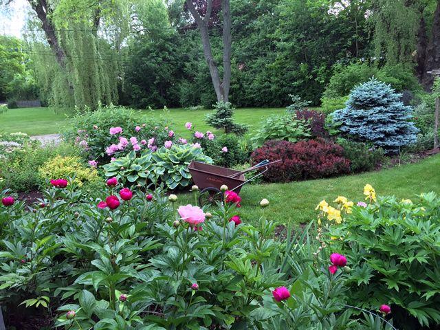 Best Garden Ideas Images On Pinterest Beautiful Gardens