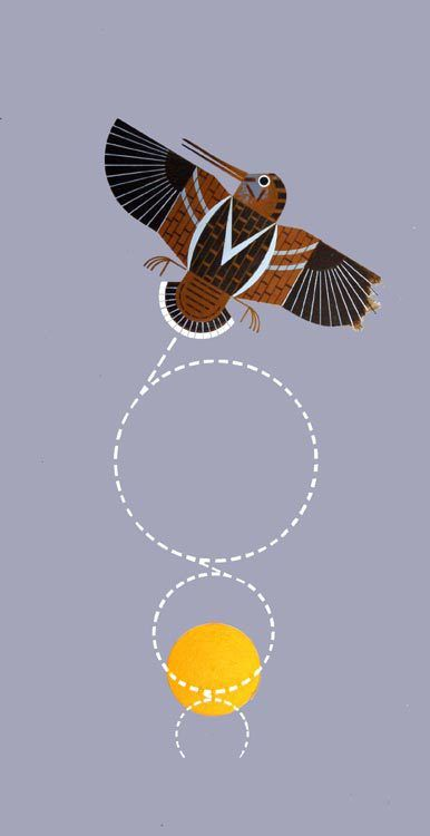 Charley Flying Bird Harper