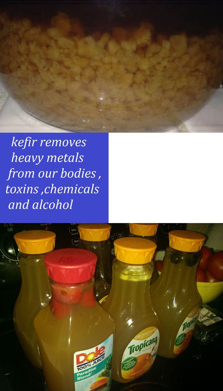 Other Natural Remedies: Fresh Organic Water Kefir Grains Tibicos Best Probiotic Immunotherapy 1 4-3 Cups -> BUY IT NOW ONLY: $38.98 on eBay!