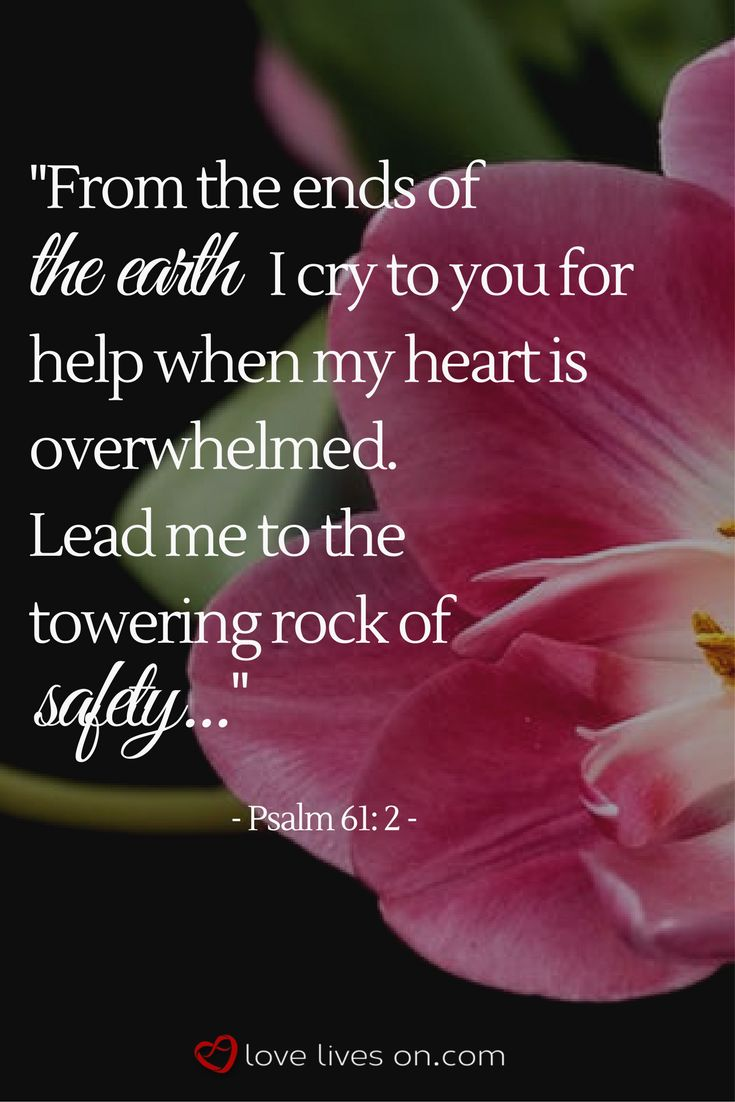 The 25 best bible verses for funerals ideas on pinterest bible 100 best funeral quotes dhlflorist Gallery