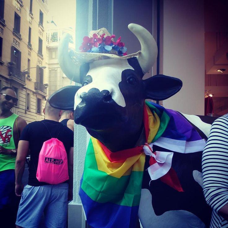 Gay Pride in Madrid #solitarysociety #travelcom #gaypride2016 #rainbow